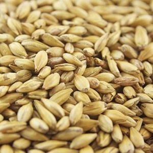 Light Crystal Malt