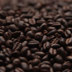 Wheat Chocolat Malt