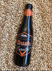 Bush Ambrée Caractere - 33 Cl