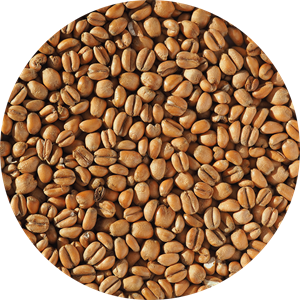 Torrified Wheat Malt - EBC 3-5