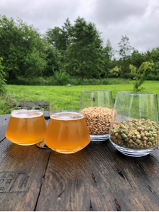 North Pale Ale - Brewparts All-Grain Kit