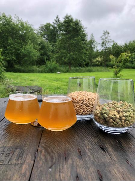 North Pale Ale - Brewparts All-Grain Kit