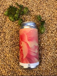 Dayglow - IPA - Alefarm Brewing