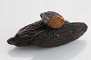 Tonka Bønner 10 Gram (8-10 Stk.)