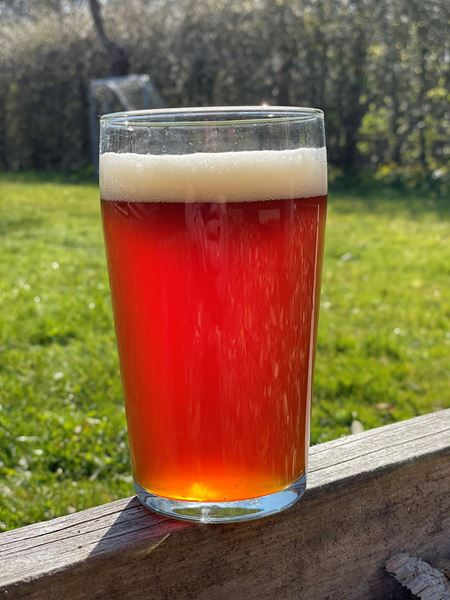 It´S Been A While - Amber Ale - Hops & Haze Brewing