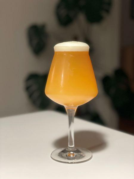 Transgressions - DH Farmhouse Ale - Hops & Haze Brewing